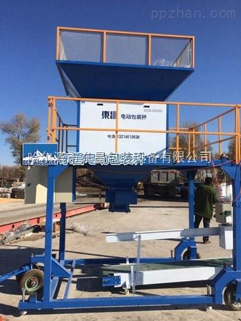 辽宁省玉米灌包机营口市木炭颗粒灌包机DDC-D60